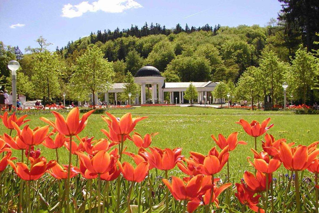Tschechien marienbad 4 tage 4 sterne hotel excelsior inkl for Designhotel 4 sterne